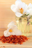 Saffron spice and flower crocus Royalty Free Stock Photo