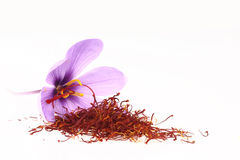 Saffron spice and Saffron flowers Stock Photo