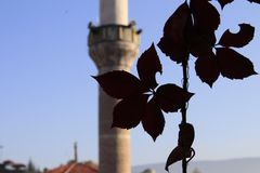 Blurred image of a medieval Ottoman mosque and its minaret under bright blue sky with ivy leaves in the foreground royalty free stock images