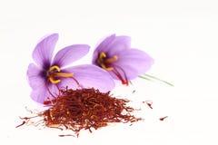 Safrangewürz und Safranblumen Lizenzfreie Stockfotos