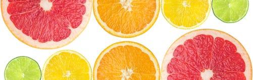 saftig citrus Fotografering för Bildbyråer