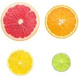 saftig citrus Royaltyfri Foto