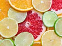 saftig citrus Royaltyfri Bild