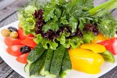 Saftig, för sommargrönsaksallad klipp från nya grönsaker och gräsplaner i en härlig portion på en trätabell arkivfoto