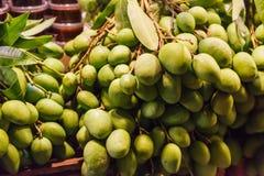Saftig frukt med en kärnastenfrukt för nya lösa naturliga tropiska asiatiska gröna rå omogna mango från trädgård på bondestånd sä royaltyfri bild