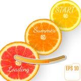 Saftig fruktapelsin Sommarpäfyllningsstång, vit bakgrund Arkivbild