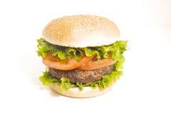 saftig hamburgare Royaltyfria Bilder