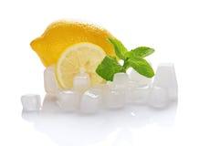 Saftig mogen citron, mintkaramell och kuber av is royaltyfri foto