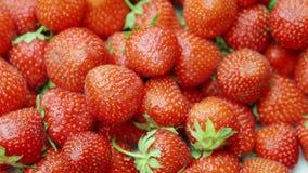 Saftig mogen jordgubbe Arkivfoto