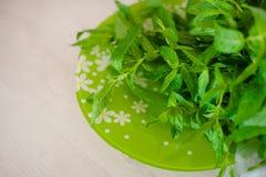 Saftig ny grön mintkaramell på en platta Royaltyfria Bilder