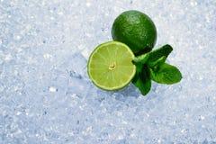 Saftig ny limefrukt och mintkaramell på iskuber royaltyfri bild