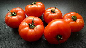 Saftig ny tomate Arkivbilder