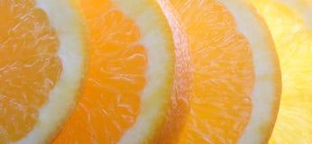 saftig orange Arkivfoto