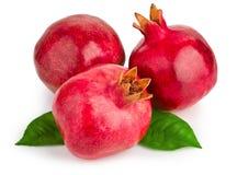 Saftig pomegranate med leaves royaltyfri bild