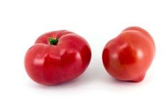 saftig röd tomat Royaltyfri Foto