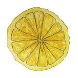 Saftig skiva av citronen som isoleras på vit bakgrund Arkivfoton
