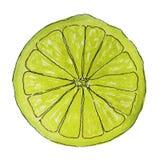 Saftig skiva av citronen som isoleras på vit bakgrund Arkivbilder
