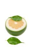 saftig white för grapefrukt Arkivbilder