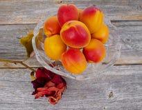 saftiga aprikosar Arkivfoton