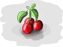saftiga Cherry stock illustrationer