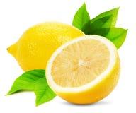Saftiga citroner som isoleras på den vita bakgrunden Arkivbild