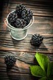 Saftiga dewberries i hink på tappningträbakgrund royaltyfri bild