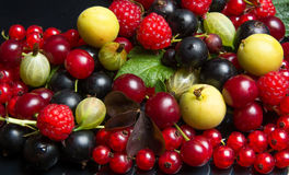 Saftiga frukter och bär Royaltyfri Fotografi