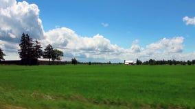 Saftiga gröna ängar, ljus blå himmel med vitmoln och lantgårdbyggnader stock video