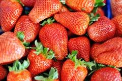 Saftiga läckra nya röda jordgubbar Arkivbild