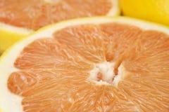 saftiga nya grapefrukter Arkivbilder