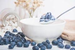 Saftiga och nya blåbär på skeden med yoghurt arkivbilder