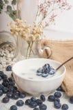 Saftiga och nya blåbär på skeden med yoghurt royaltyfria foton