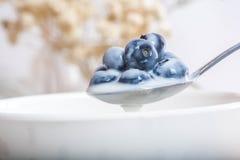 Saftiga och nya blåbär på skeden med yoghurt arkivfoto
