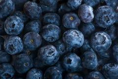 Saftiga och nya blåbär på tabellen på morgonen Royaltyfri Bild