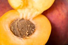 Saftiga och nya frukter Royaltyfria Bilder