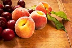 Saftiga persikor och plommoner Royaltyfri Fotografi