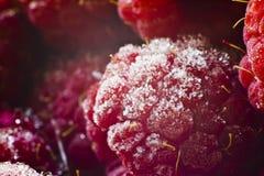 Saftiga röda hallon för makro Fotografering för Bildbyråer