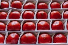 Saftiga tomater i en ask, frukter ligger separat Royaltyfri Foto