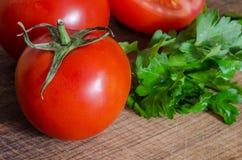 Saftiga tomater med gräsplan-material Royaltyfri Fotografi