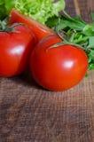 Saftiga tomater med gräsplan-material Royaltyfria Foton