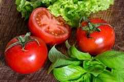 Saftiga tomater med gräsplan-material Arkivfoton