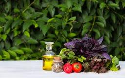 Saftiga tomater, olivolja och gräsplaner för sallad Nya grönsaker och basilika kopiera avstånd Arkivbilder