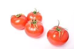 Saftiga tomater på vit bakgrund Royaltyfri Fotografi