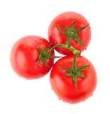 saftiga tre visade övre för tomater Arkivfoton