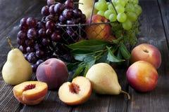Saftiga välsmakande päron, druva, nektariner och persikor i korg Arkivbilder