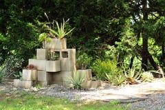Saftige Anlagen innerhalb der Mittelblöcke in einem saftigen Garten stockbild