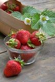 Saftige Erdbeere Lizenzfreies Stockfoto