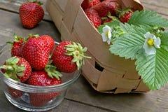 Saftige Erdbeere Lizenzfreie Stockfotos