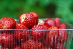 Saftige Erdbeernahaufnahme auf Kasten Lizenzfreie Stockfotos