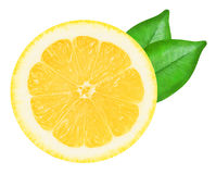 Saftige gelbe Zitrone auf einem weißen Hintergrund lokalisiert Lizenzfreies Stockbild